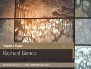 raphael-bianco-aquela-mata-expo-matias-brotas-2014-feat-ok