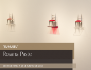 rosana-paste-eu-museu-expo-matias-brotas-2014-feat-ok