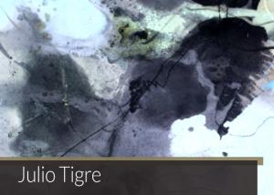 Julio Tigre | Matias Brotas arte contemporânea