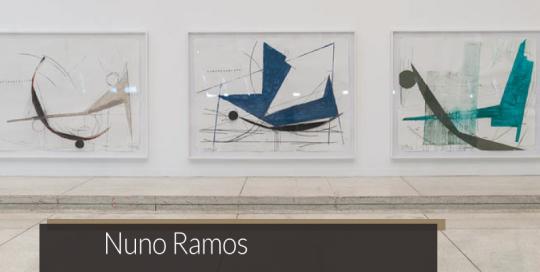 Nuno Ramos | Matias Brotas arte contemporânea