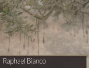 Raphael Bianco | Matias Brotas arte contemporânea