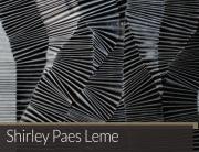 Shirley Paes Leme | Matias Brotas arte contemporânea